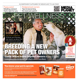 Pet Wellness 3